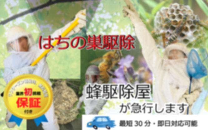 駆除料金トップ001.png