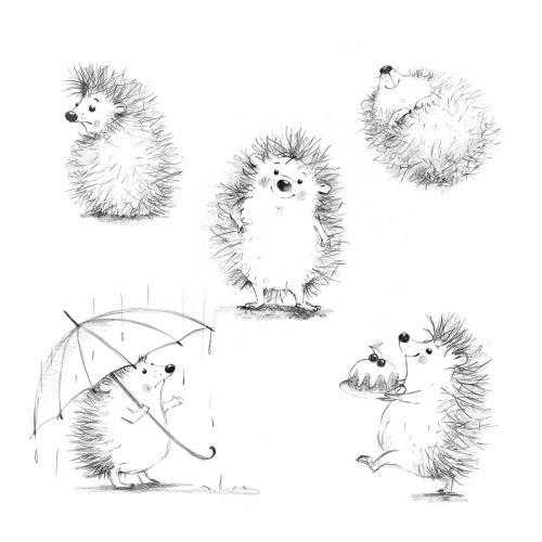 character design, hedgehog, cute animal, greeting cards, illustration, postcard