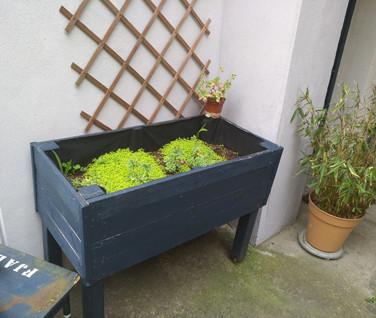 Jardiniere en palette