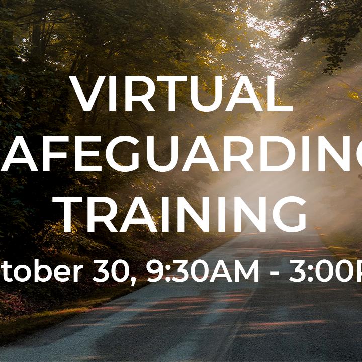 Virtual Safeguarding Training