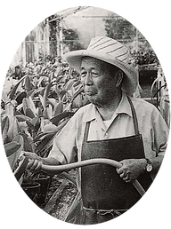 Tatsugoro Matsumoto