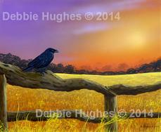 The Crow Field
