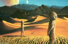 Desert Buddies