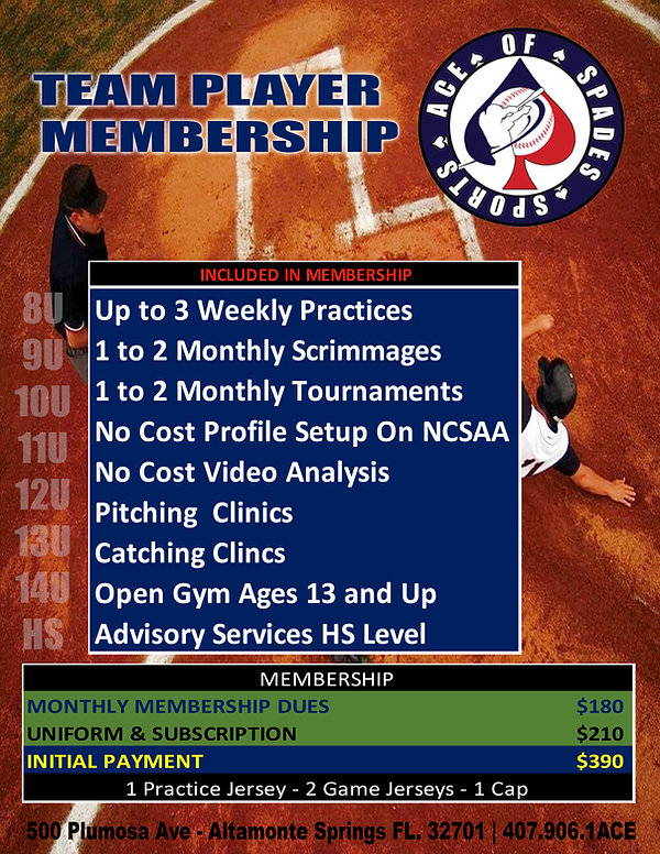 Team Player Membership.jpg