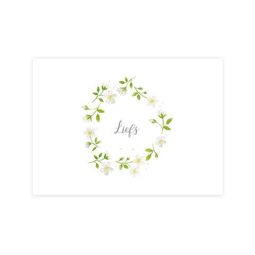 Ansichtkaart jasmijn-liefs