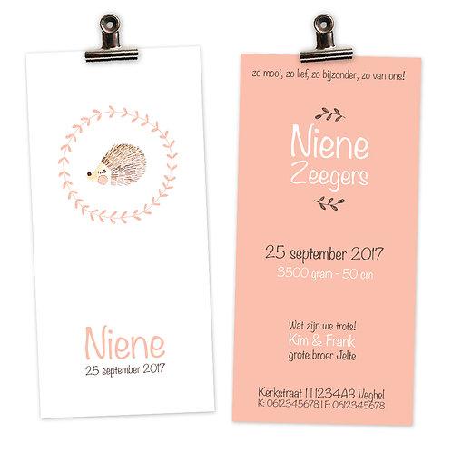 geboortekaartje Niene