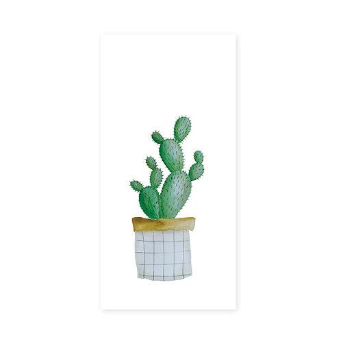 Cactus | incl. envelop | 3 stuks