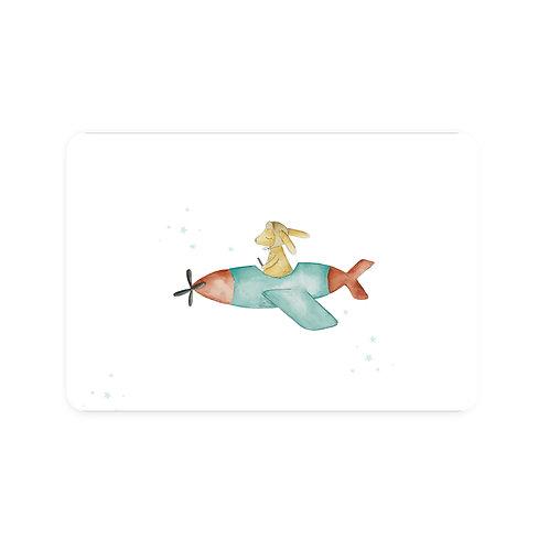 Ansichtkaart konijn vliegtuig | A6 | 4 stuks