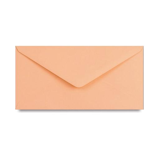 Envelop zalmroze
