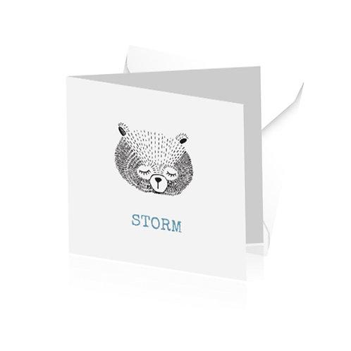 geboortekaartje Storm