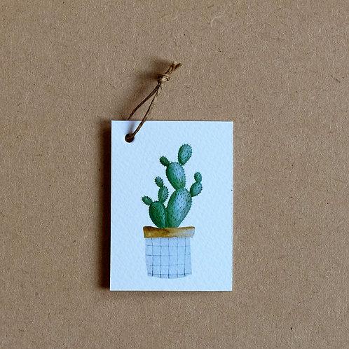 Cactus | set 2 labels