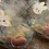 Thumbnail: Spring T-Cake Basket
