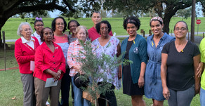 Descendants Honor Enslaved Ancestor with Tree-Planting