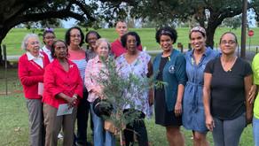 Descendants Honor Enslaved Ancestor with Tree-Planting