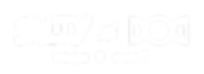Salty Dog Yoga & Surf Logo