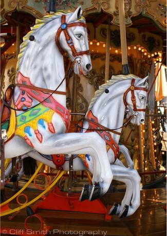 Avignon carousel.jpg