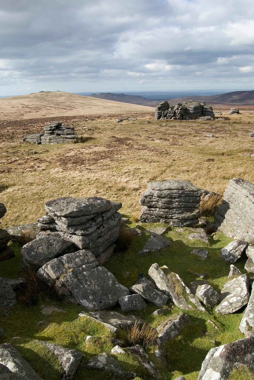 Wild Tor, Dartmoor