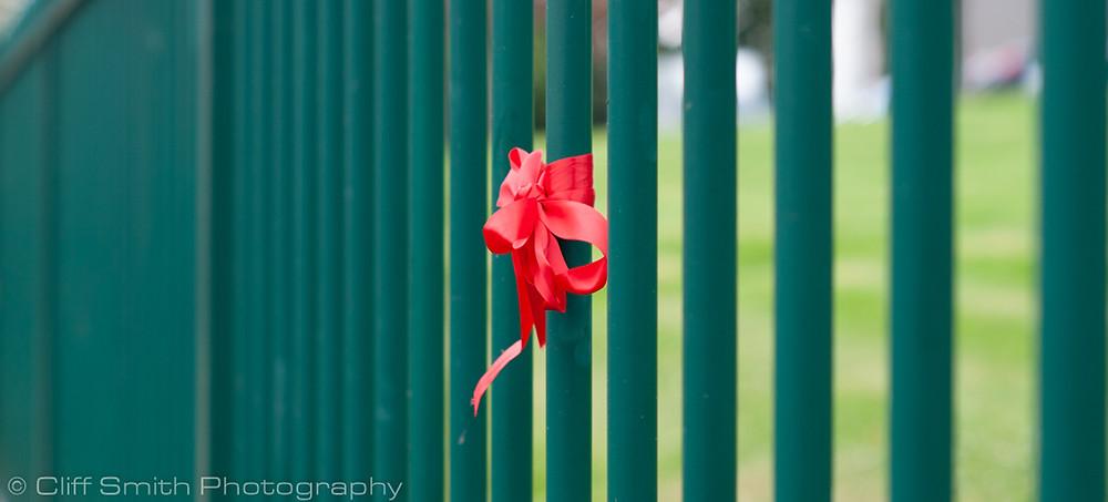 Header image - ribbon on railings