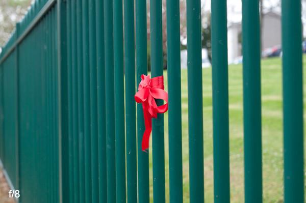 Photo of railings at f8