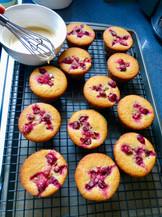 Cotton Creations Vegan Cranberry Orange Corn Muffins