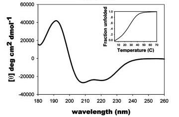 Circular dichroism spectroscopy