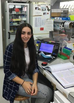 Hadeel Hreish