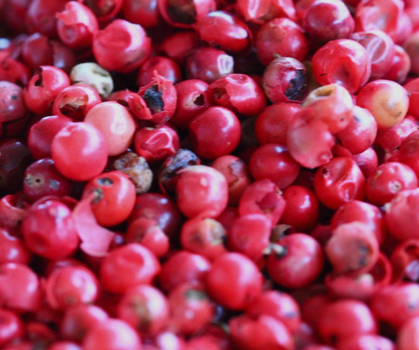 Pink-Pepper-31_edited.jpg