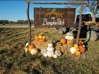 Pumpkin Patches in Nebraka