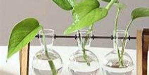 Imaginative Glass Vase