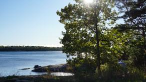 Fyra saker som hjälper dig att överleva hösten (Part Two)