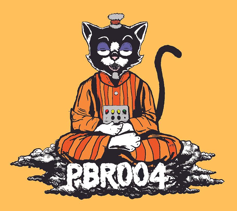 PBR004 Cat.jpg