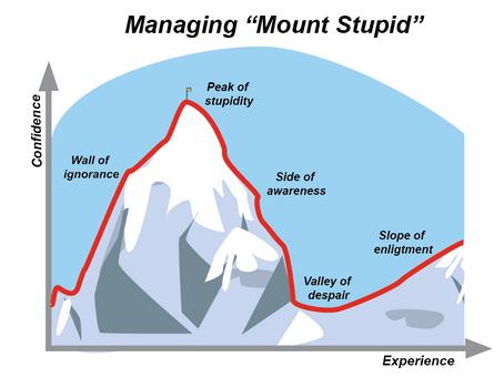 Stuck on Mount Stupid