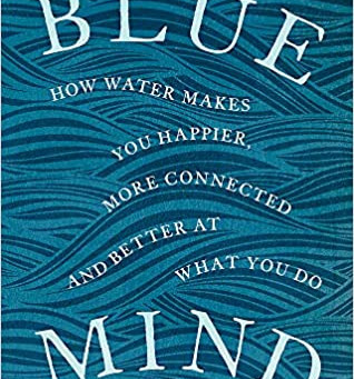 Covid Mental Health Challenge #25-  Blue Mind- how just being near water heals you