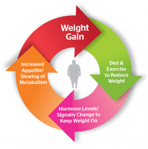 Covid weight loss challenge #10- The set point and how it changes everything in weight management.