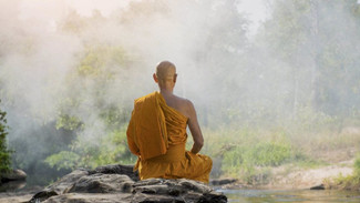 Think like a monk, not a monkey - Covid mental health challenge #34