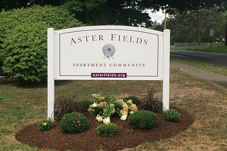 Aster Fields.jpg