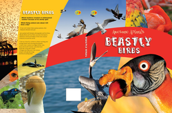 Beastly_Birds