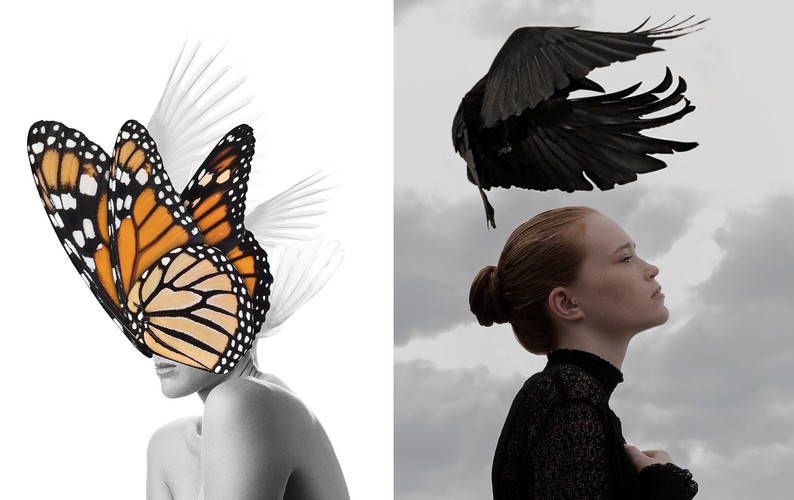 www.duality.com