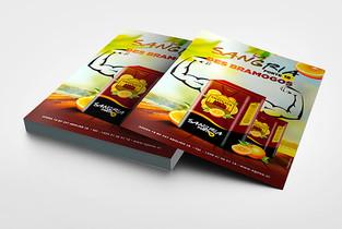 Projet MIBEM cover (design réalisé par T