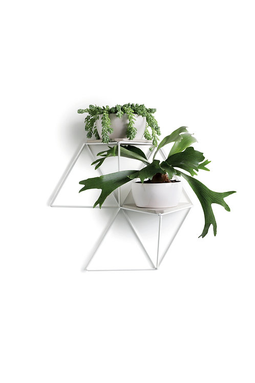 Garden Module white | gray base