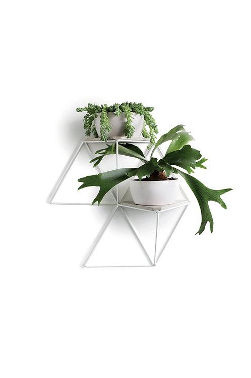 Módulo Jardim | branco