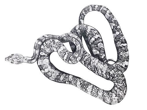 Pencil tonal snake.jpg