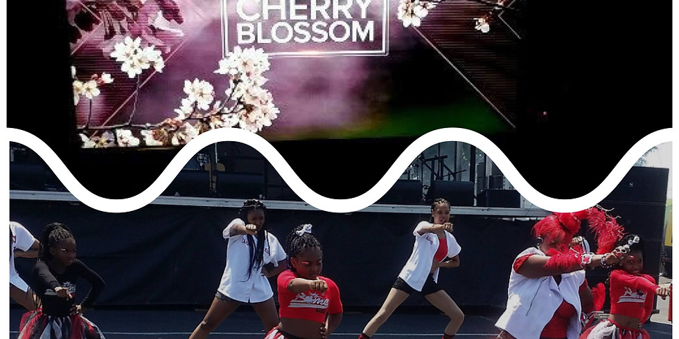 BIRDETTS/BIRDS needed for Macon Cherry Blossom Festival
