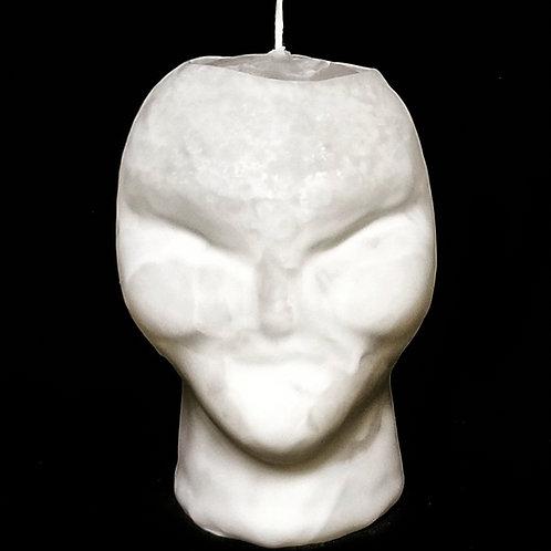Alien Head Custom
