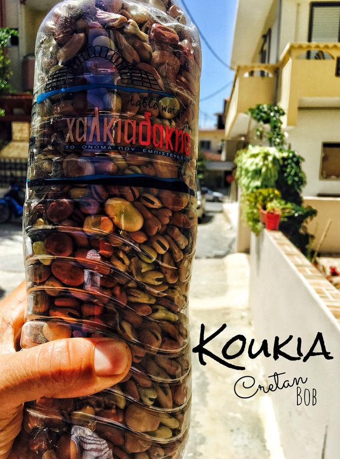 Koukia - krétský bob