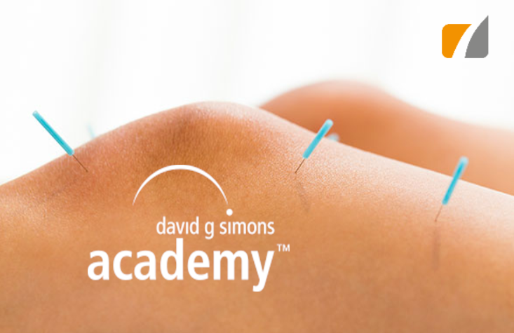 DGSA cours Physio 7 Dry Needling.png