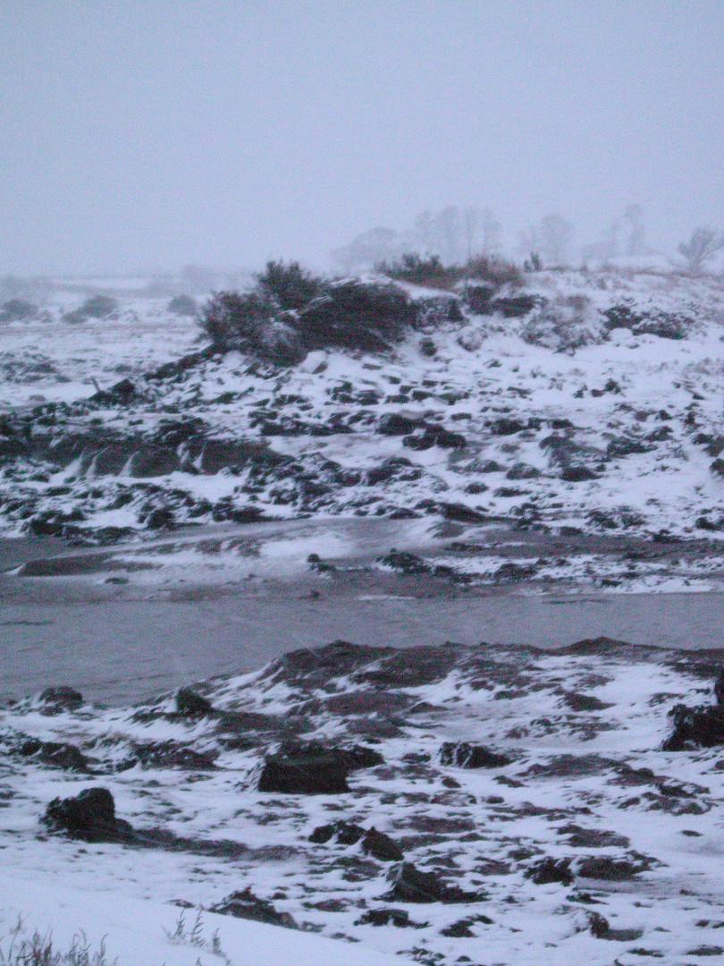 Shooting+Pics+2009+Snow+004.jpg
