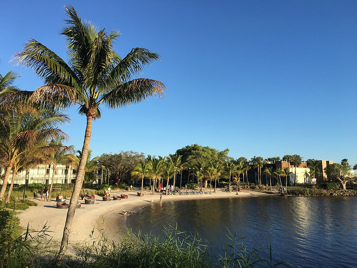 Recline At The Table - Sandpiper Bay Club Med