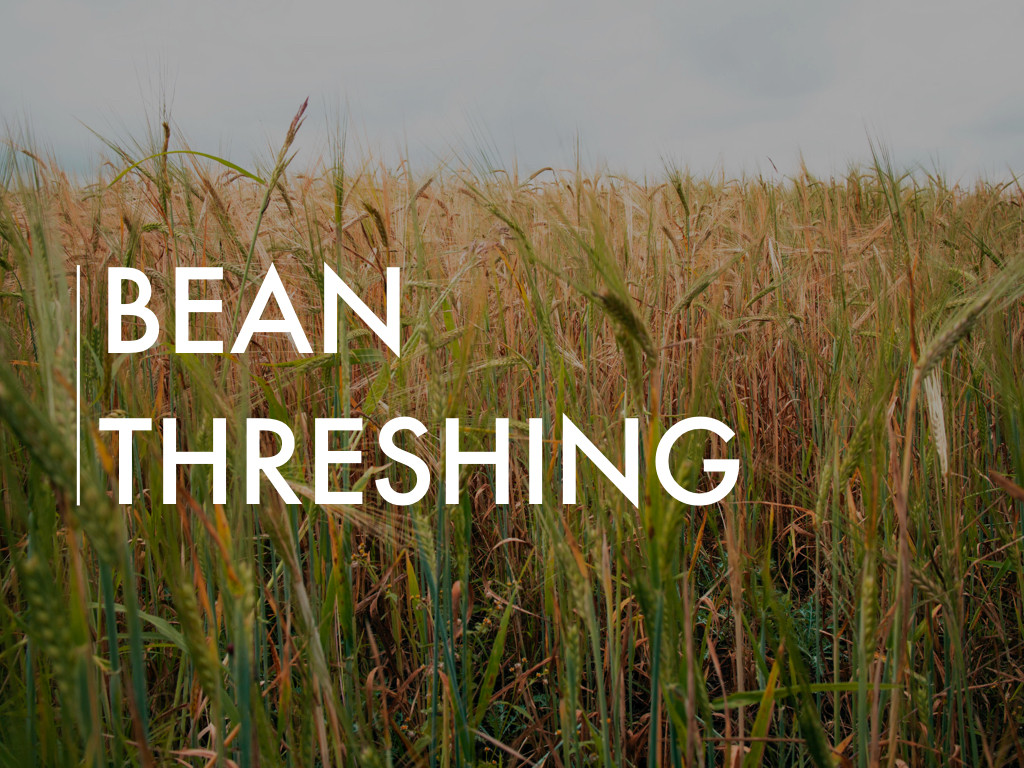 Bean Threshing Project