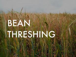 Bean Threshing Project